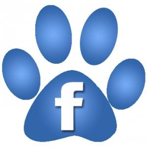Logo facebook lien vers notre page facebook